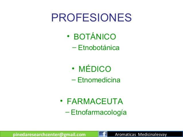 PROFESIONES • BOTÁNICO – Etnobotánica  • MÉDICO – Etnomedicina  • FARMACEUTA – Etnofarmacología pinedaresearchcenter@gmail...