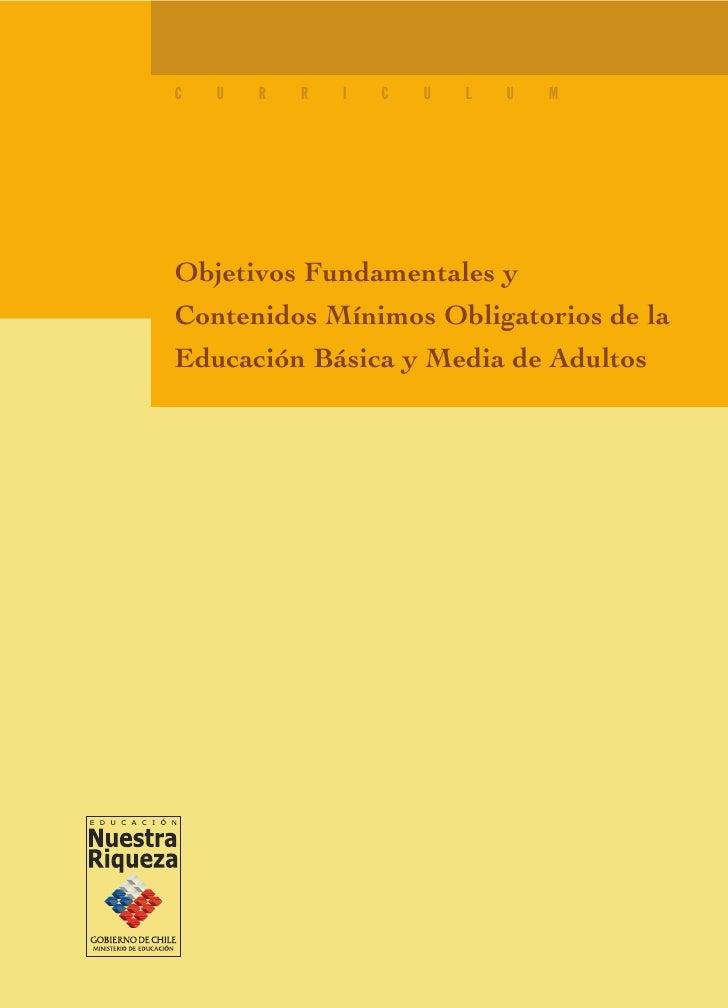 C   U   R   R   I   C   U   L   U   M     Objetivos Fundamentales y Contenidos Mínimos Obligatorios de la Educación Básica...