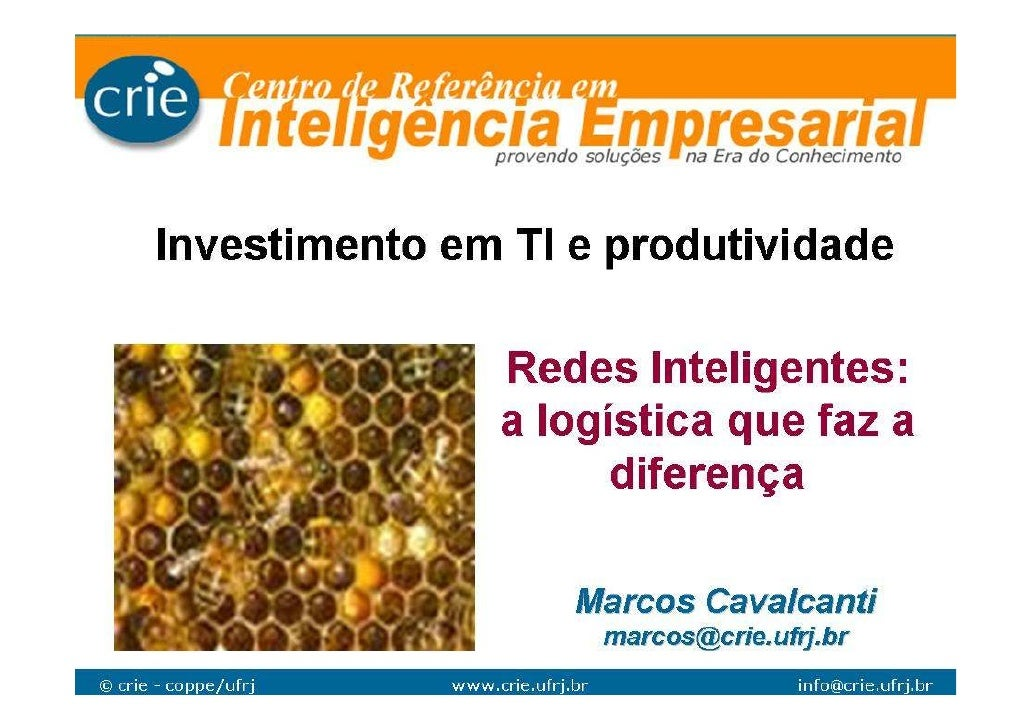 Marcos Cavalcanti - Investimento em TI e Produtividade
