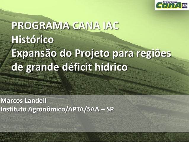 Os avanços na área do melhoramento convencional da cana e o papel do IAC nesse processo
