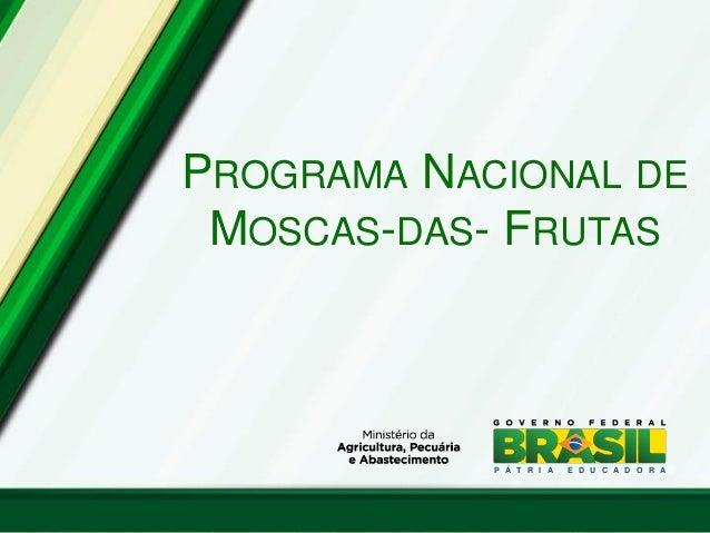 PROGRAMA NACIONAL DE MOSCAS-DAS- FRUTAS P Á T R I A E D U C A D O R A