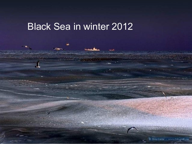 Marea neagra inghetata ian.2012
