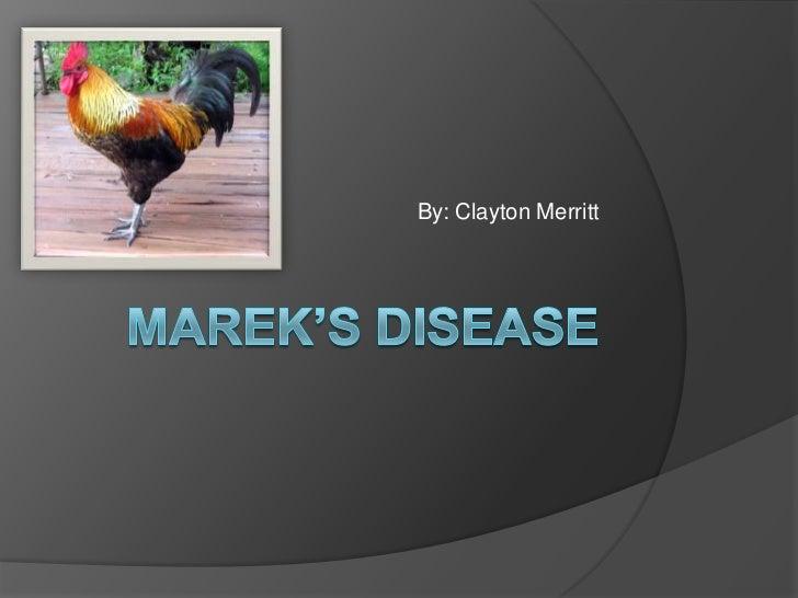 Marek's Disease<br />By: Clayton Merritt<br />