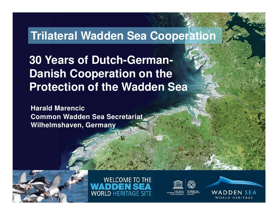 Herald Marencic 30 Years of Dutch-German-Danish Cooperation on the Protection of the Wadden Sea