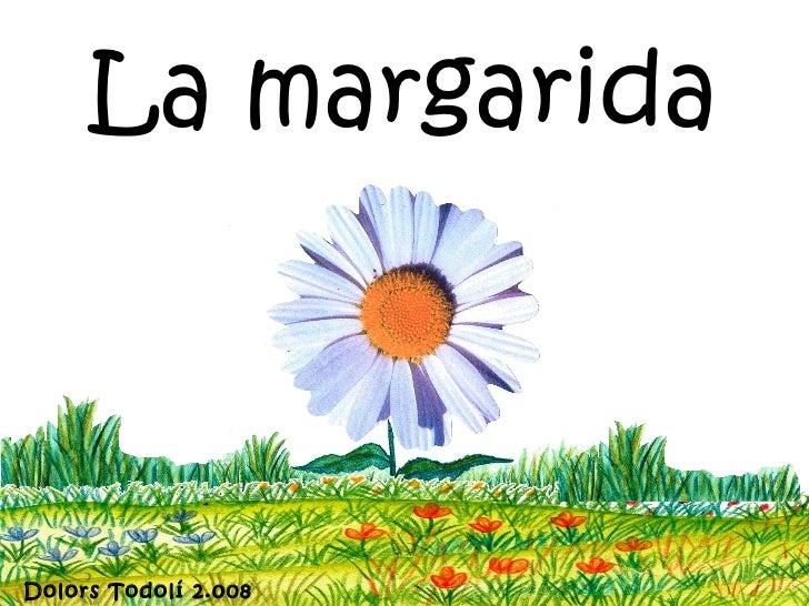 La margaridaDolors Todolí 2.008
