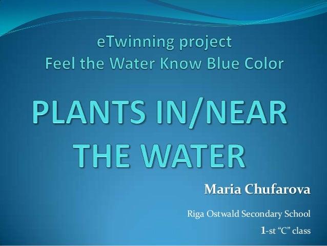 """Maria Chufarova Riga Ostwald Secondary School  1-st """"C"""" class"""