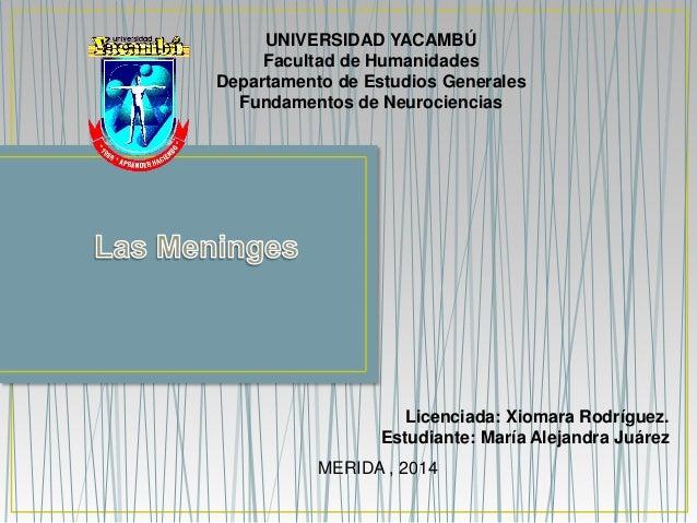 UNIVERSIDAD YACAMBÚ  Facultad de Humanidades  Departamento de Estudios Generales  Fundamentos de Neurociencias  Licenciada...