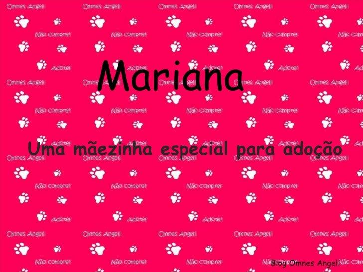 Mariana Uma mãezinha especial para adoção Blog Omnes Angeli