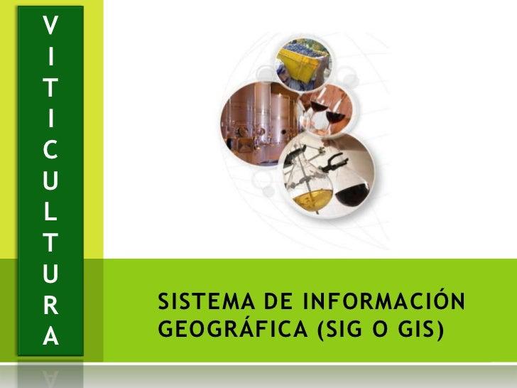 VITICULTUR   SISTEMA DE INFORMACIÓNA   GEOGRÁFICA (SIG O GIS)