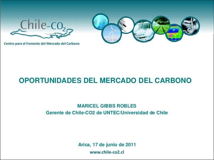Oportunidades del Mercado del Carbono, Maricel Gibbs