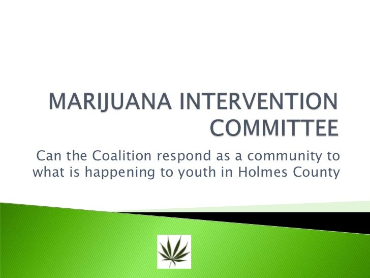 MARIJUANA INTERVENTION COMMITTEE<br />Can the Coalition respond as a community to what is happening to youth in Holmes Cou...
