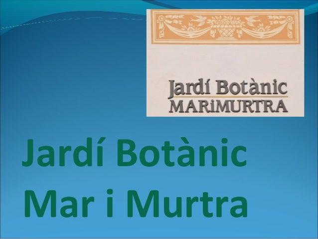 Jardí BotànicMar i Murtra