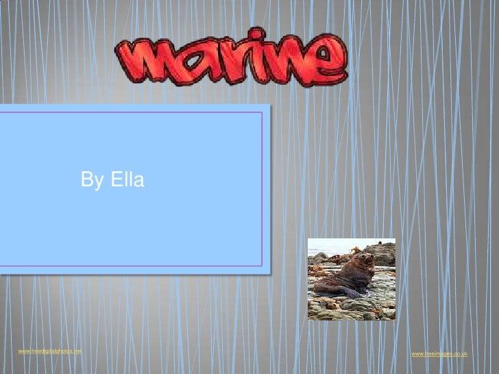 Marine Ella
