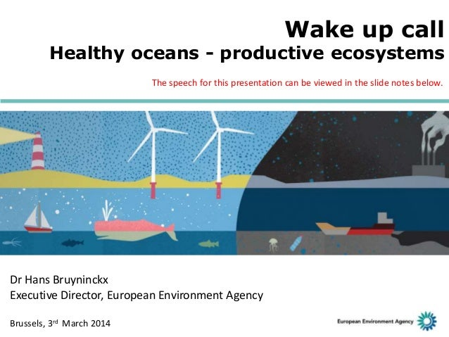 Wake up call: healthy oceans - productive ecosystems