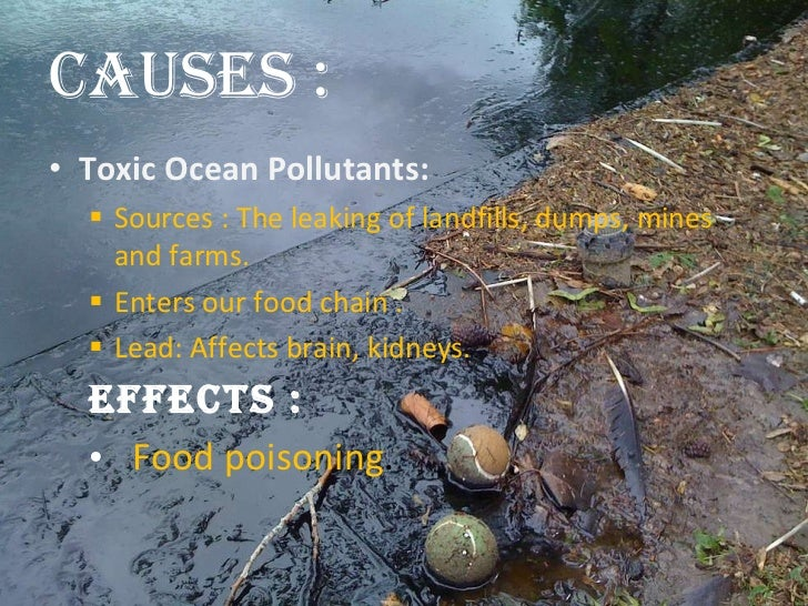 the effects of marine pollution The main causes and effects of marine pollution by jessica macdonald jun 28, 2014 as divers, we all too often witness the effects of marine pollution firsthand sadly, even the world's most remote dive destinations usually bear some evidence of human contamination.