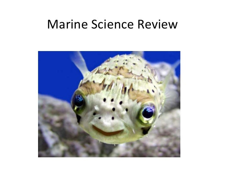 Marine Science Review