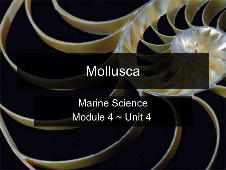 Mollusca Marine Science Module 4 ~ Unit 4