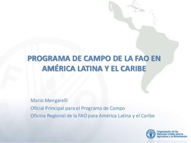 PROGRAMA DE CAMPO DE LA FAO EN   AMÉRICA LATINA Y EL CARIBEMario MengarelliOficial Principal para el Programa de CampoOfic...