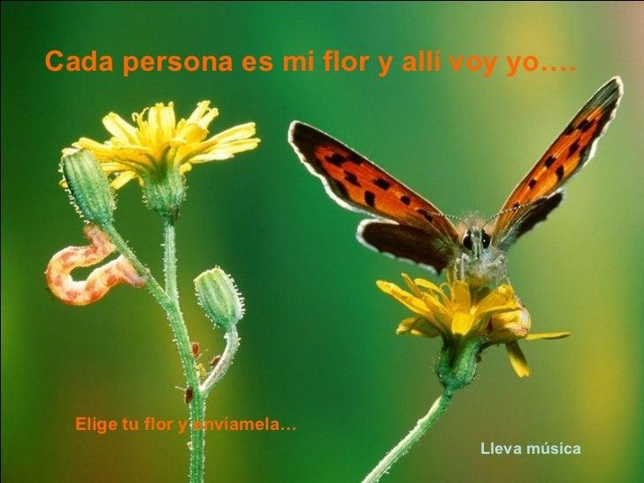 Cada persona es mi flor y allí voy yo…. Elige tu flor y envíamela… Lleva música