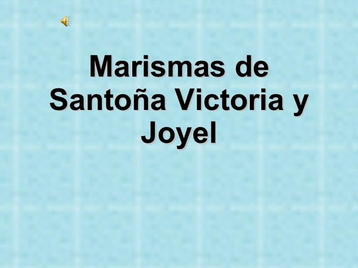 Marismas de Santoña Victoria y Joyel