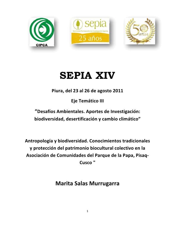 """SEPIA XIV            Piura,del23al26deagosto2011                     EjeTemáticoIII    """"DesafíosAmbientales.A..."""