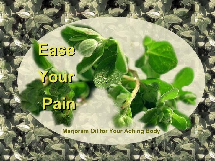 Ease  Your Pain Marjoram Oil for Your Aching Body