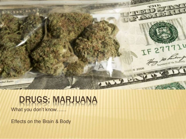 DRUGS: MARJUANA What you don't know…… Effects on the Brain & Body
