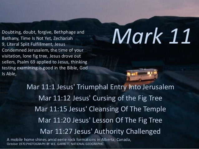 Mark 11, Triumphal entry, fig tree, cleansing temple, doubting, doubt, forgive, Bethphage and Bethany, time is not yet, Zechariah 9, literal split fulfillment, time of visitation, lone fig, Psalm 69, thinking