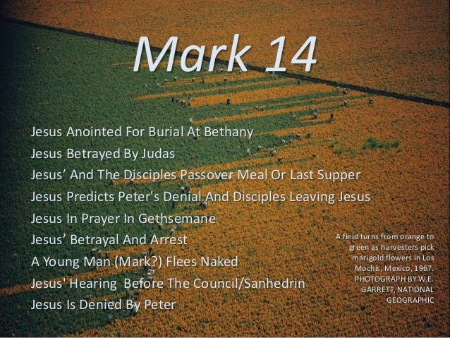 Mark 14 Jesus Anointed For Burial At Bethany Jesus Betrayed By Judas Jesus' And The Disciples Passover Meal Or Last Supper...