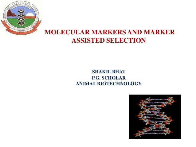MOLECULAR MARKERS AND MARKER ASSISTED SELECTION  SHAKIL BHAT P.G. SCHOLAR ANIMAL BIOTECHNOLOGY