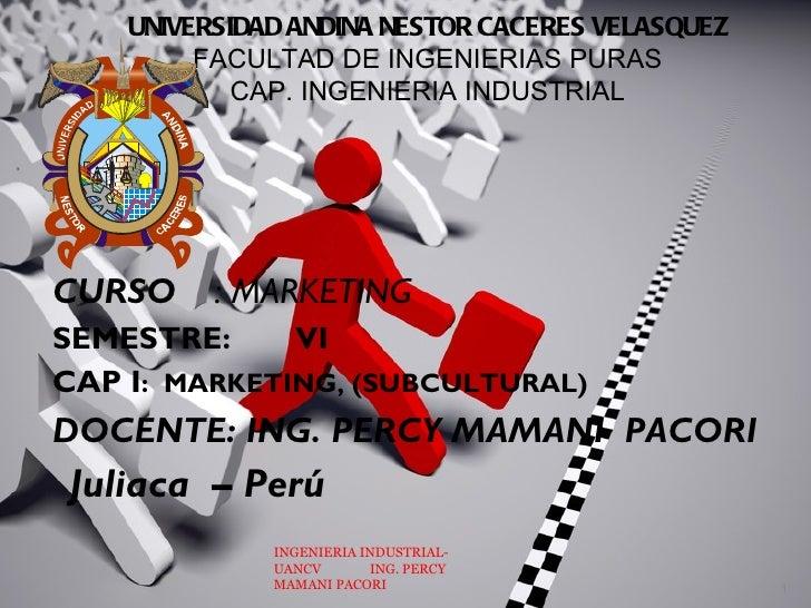 UNIVERSIDAD ANDINA NESTOR CACERES VELASQUEZ            FACULTAD DE INGENIERIAS PURAS               CAP. INGENIERIA INDUSTR...