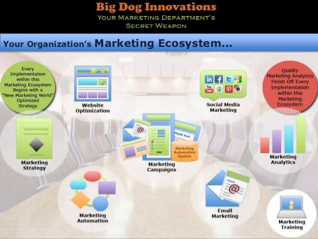 Your Organization's   Marketing Ecosystem...