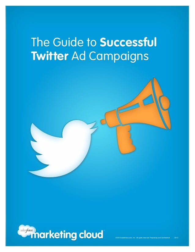 The Guide to Successful Twitter Ad Campaigns