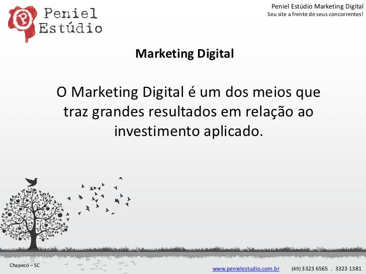 Peniel Estúdio Marketing Digital                                                          Seu site a frente de seus concor...