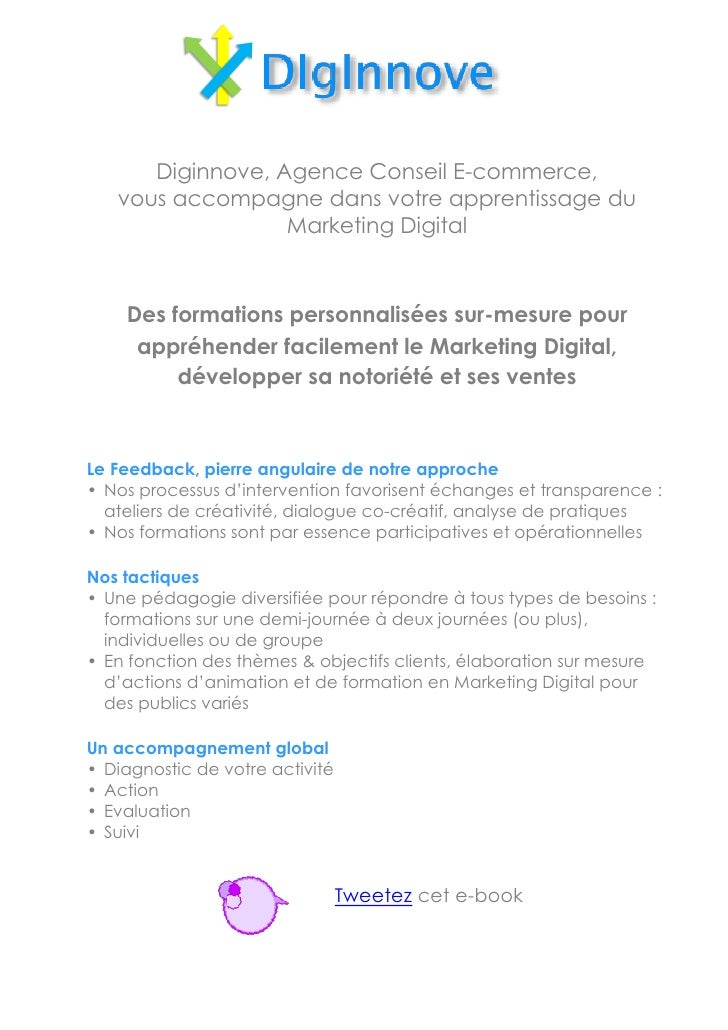 Marketing digital  stratégie, enjeux, outils
