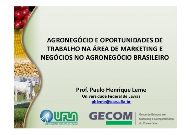 AGRONEGÓCIOEOPORTUNIDADESDE TRABALHONAÁREADEMARKETINGE NEGÓCIOSNOAGRONEGÓCIOBRASILEIRO  Prof.PauloHenrique...