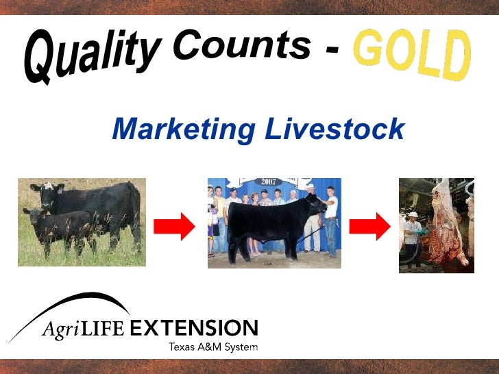 Marketing Livestock (Chapter 1)