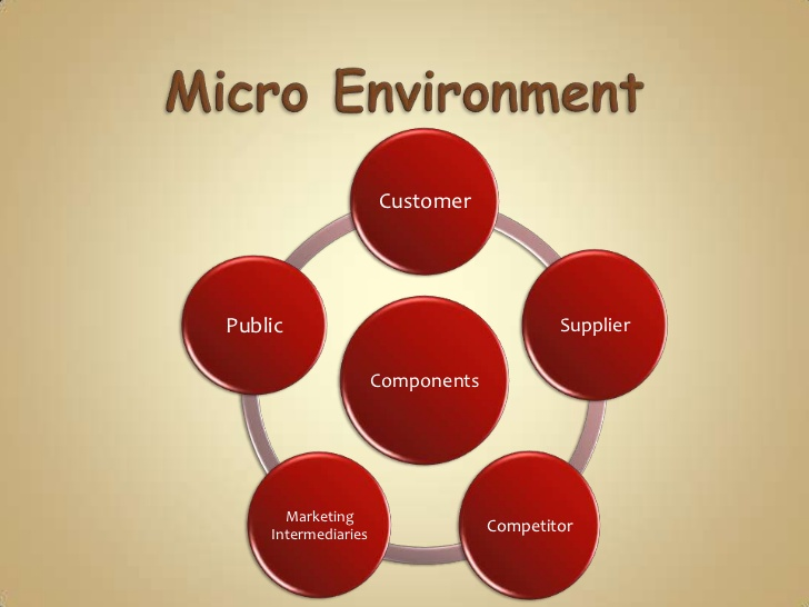 essays environmental forces