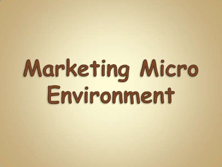 Definition of micro environment essay