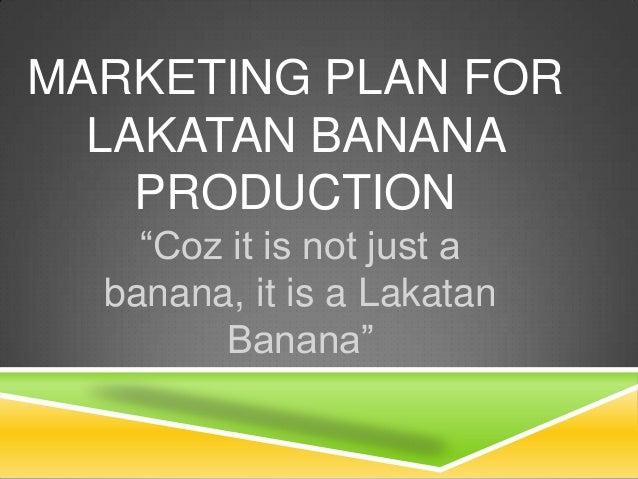 Starting a Banana Farm