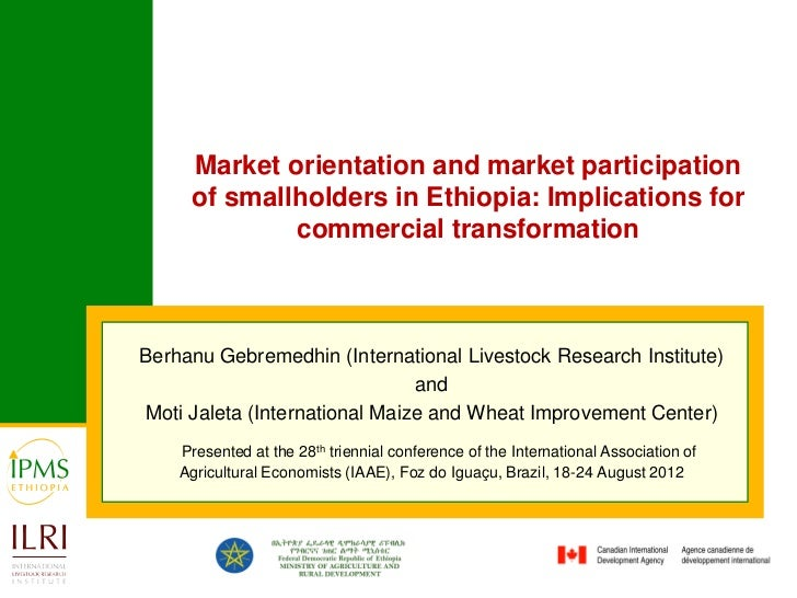 Market orientation and market participation of smallholders in Ethiopia: Implications for commercial transformation