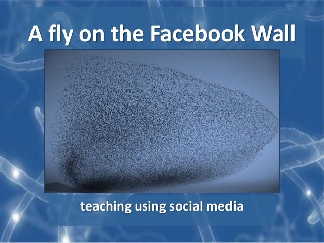 A fly on the Facebook Wall teaching using social media