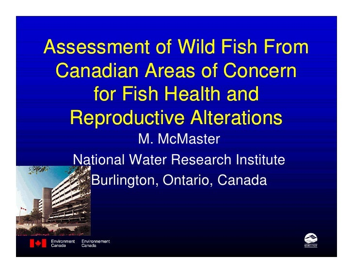 Assessment of Wild Fish From Canadian Areas of Concern     for Fish Health and  Reproductive Alterations             M. Mc...