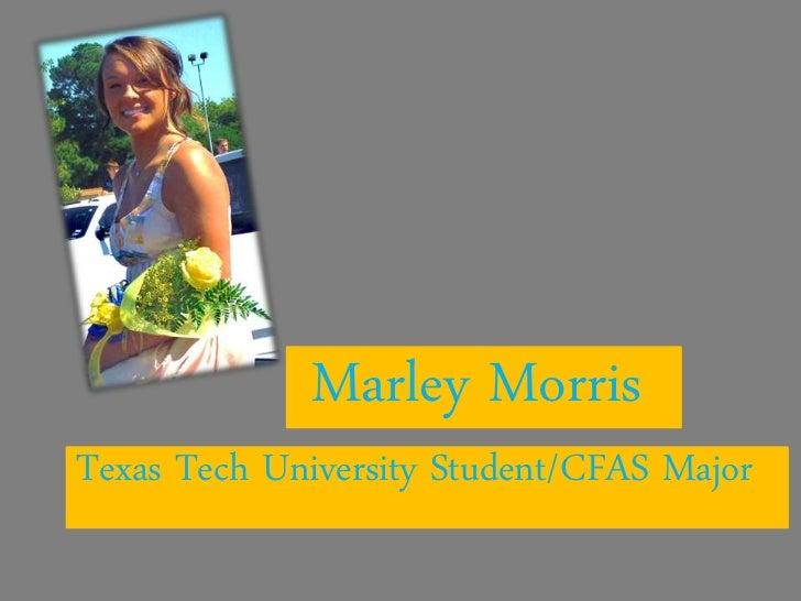 Marley MorrisTexas Tech University Student/CFAS Major
