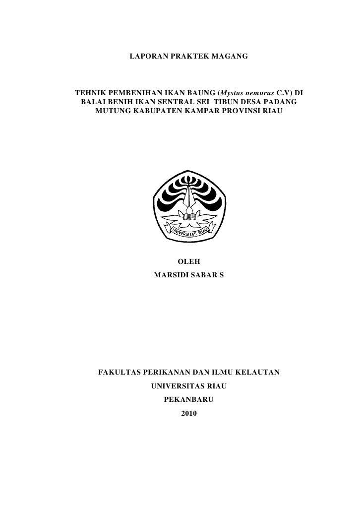 1                LAPORAN PRAKTEK MAGANG    TEHNIK PEMBENIHAN IKAN BAUNG (Mystus nemurus C.V) DI  BALAI BENIH IKAN SENTRAL ...