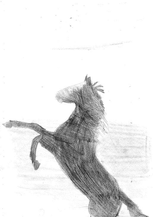 Marta y su caballo