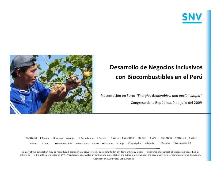 Desarrollo de Negocios Inclusivos                                                                                        c...