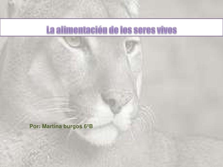 La alimentación de los seres vivos<br />Por: Martina burgos 6ºB<br />