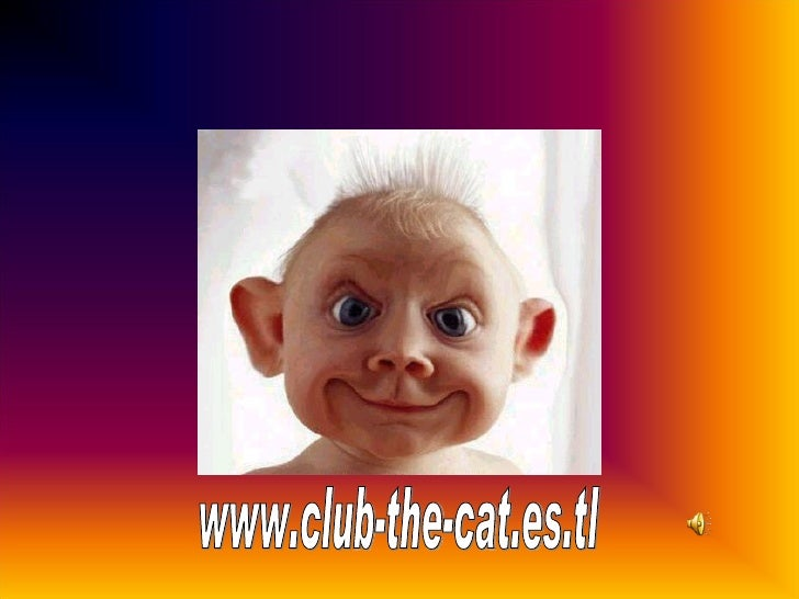 www.club-the-cat.es.tl