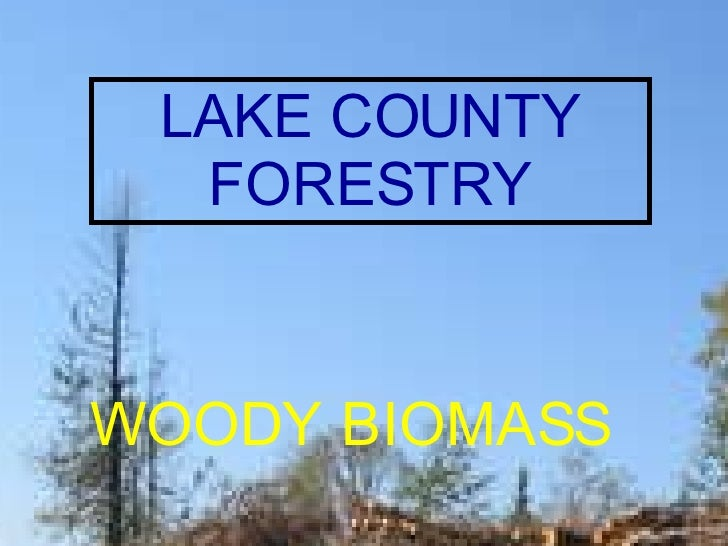 LAKE COUNTY  FORESTRY DEPARTMENT WOODY BIOMASS LAKE COUNTY FORESTRY WOODY   BIOMASS